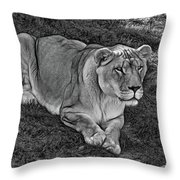 Intensity 3 Bw Throw Pillow