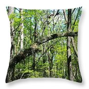 Intentions Derailed Throw Pillow