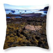 Inter-tidal Zone Deer Isle Throw Pillow