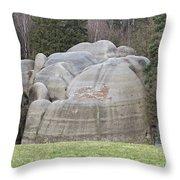 Interesting Rock Formation - Elephant Rocks Throw Pillow