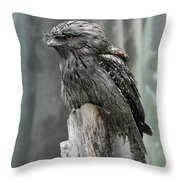 Interesting Tawny Frogmouth Perched On A Tree Stump Throw Pillow