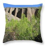 Interior Spring Throw Pillow