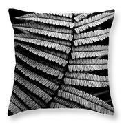 Interlaced Throw Pillow