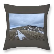 Intermittent Path Throw Pillow