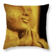 Internal Affect Throw Pillow
