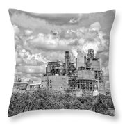 International Paper Company Throw Pillow