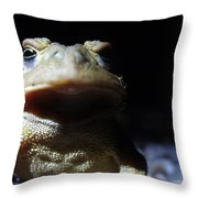 Interrogation Of A Toad Throw Pillow