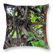 Intertwined Vine Trellis Throw Pillow
