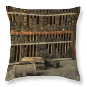Intervening Years Throw Pillow