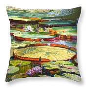 Interwoven Beauty Throw Pillow