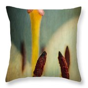 Intimate Details Throw Pillow
