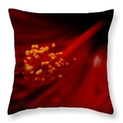 Intimate Hibiscus Throw Pillow