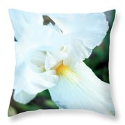 Intimate Iris Throw Pillow