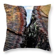 Intimately Separate Throw Pillow