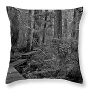 Into A Magical World Black And White Throw Pillow