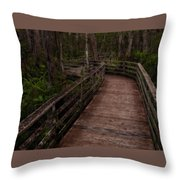 Into Audubon Corkscrew Swamp Sanctuary Throw Pillow