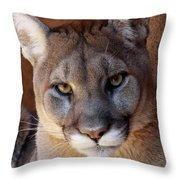 Into His Eyes Throw Pillow
