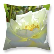Into Light 004 Throw Pillow