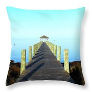 Into The Blue 5 3116 Throw Pillow
