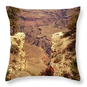 Into The Canyon Throw Pillow by Susan Rissi Tregoning