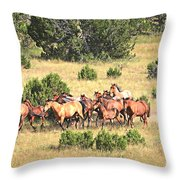 Into The Clear Throw Pillow