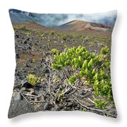 Into The Crater Throw Pillow