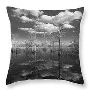 Into The Everglades Throw Pillow