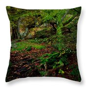 Into The Forest Of Fontainebleau Throw Pillow