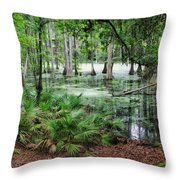 Into The Green Swamp Throw Pillow