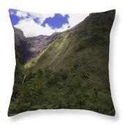 Into The Heart Of Kauai Throw Pillow