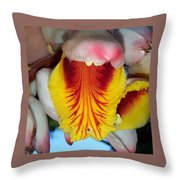 Into The Jaws Too Throw Pillow