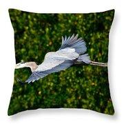 Into The Mangroves Throw Pillow