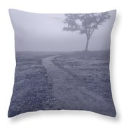Into The Mist Bw Throw Pillow by Steve Gadomski