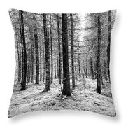 Into The Monochrome Woods Throw Pillow