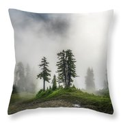 Into The Myst Throw Pillow