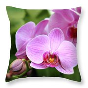 Into The Pink Throw Pillow