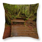 Into The Rainforest Throw Pillow