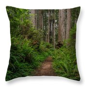 Into The Redwoods Throw Pillow