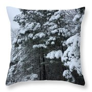 Into The Snowy Wood Throw Pillow