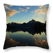 Into The Solitude  Throw Pillow