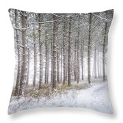 Into The Woods 3 - Winter At Retzer Nature Center  Throw Pillow