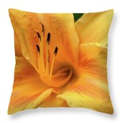 Into The Yellow  Throw Pillow