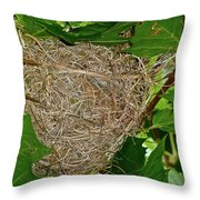 Intricate Nest Throw Pillow