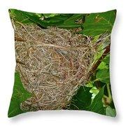 Intricate Nest Throw Pillow