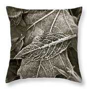 Intricately Frosted Throw Pillow