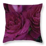 Intrigue Rose Throw Pillow