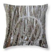 Intriguing Winter Frost Throw Pillow