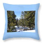Intuitive Majesty Throw Pillow