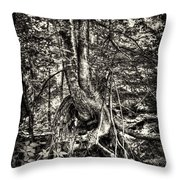 Intwined Throw Pillow