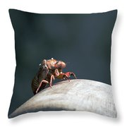 Invader From.... Throw Pillow